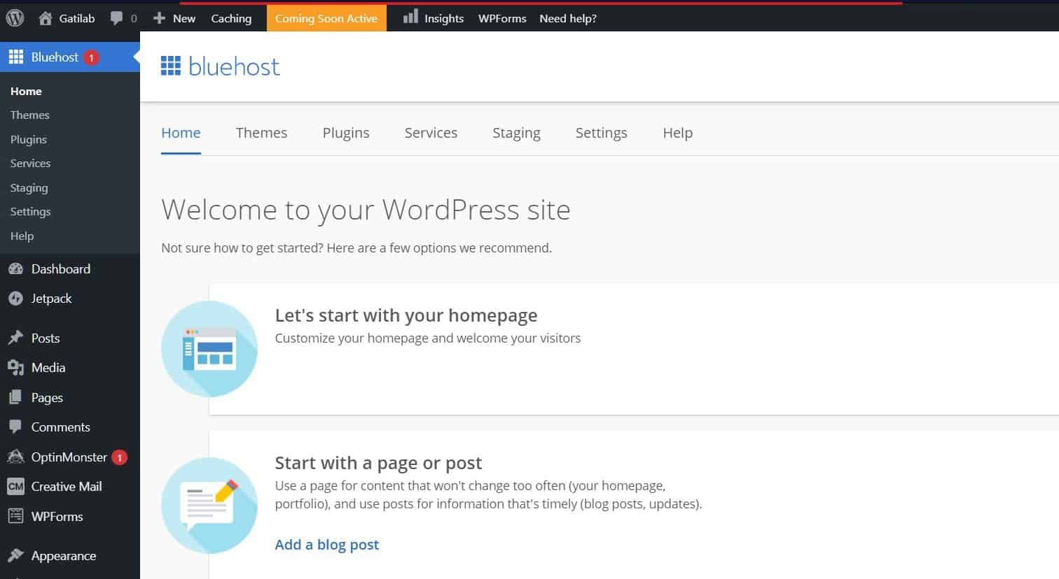 Create a Business Website with Bluehost and WordPress Step 17