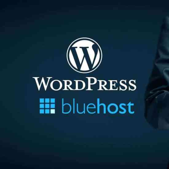 wordpress bluehost logos on business background