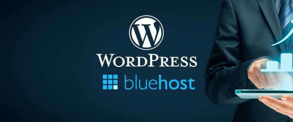wordpress bluehost logos on business background