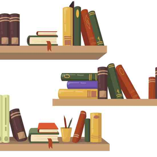 Three wooden bookshelves with various books