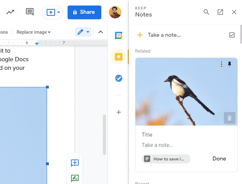 Save Images From Google Docs Document to Your Mac or PC