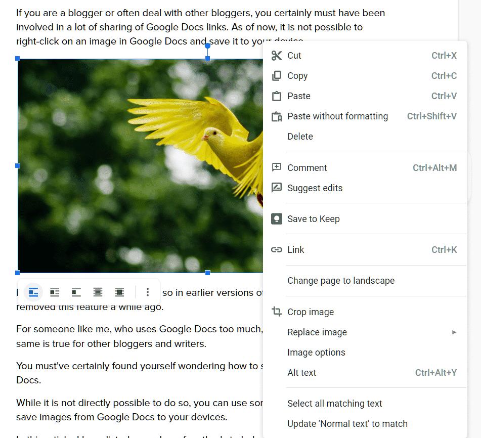 No option to save Google Docs image